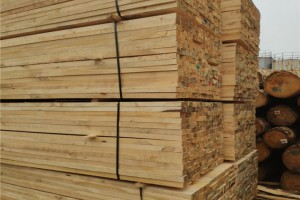 太仓市辐射松实业铁杉建筑木方价格