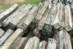 老挝木材生产加工集团没有足够的资金进行多种方式的生产