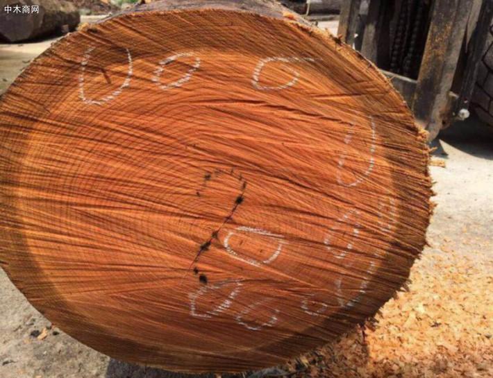 美国加税在即,中国商家未来不排除降低美国木材进口量的可能