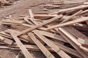 桦木烘干板,沙发条价格