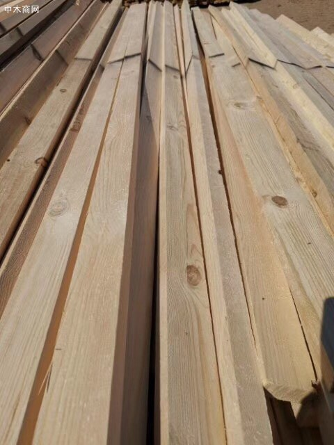 直销俄罗斯原木,方木,各种规格板材口料