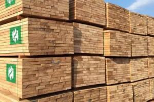 首批马来西亚进口木材正式入库保税中心