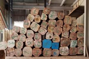 求购:硬质杂木板材,价格面议