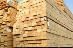 求购:南方松,铁杉板材
