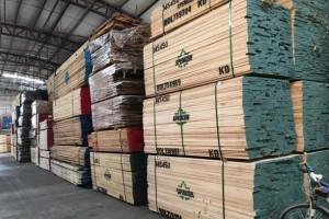 美国开始意识到硬木出口市场多样化的重要性