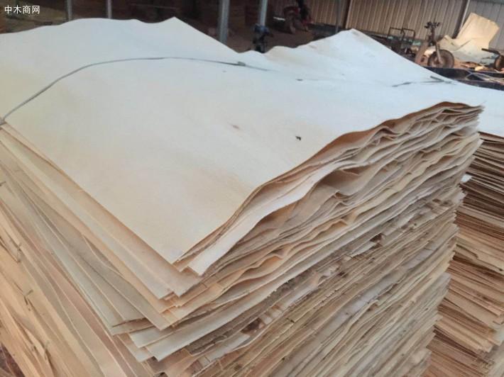 新鲜出炉杨木三拼小洞板