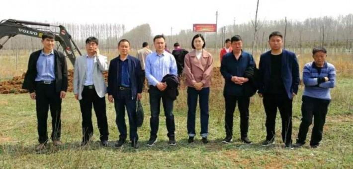 洛阳市领导视察洛宁三环华兰木业项目「木业企业」