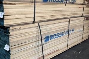 进口北美白蜡木板材价格