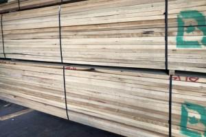 进口美国黄杨(鹅掌楸)木板材厂家直销