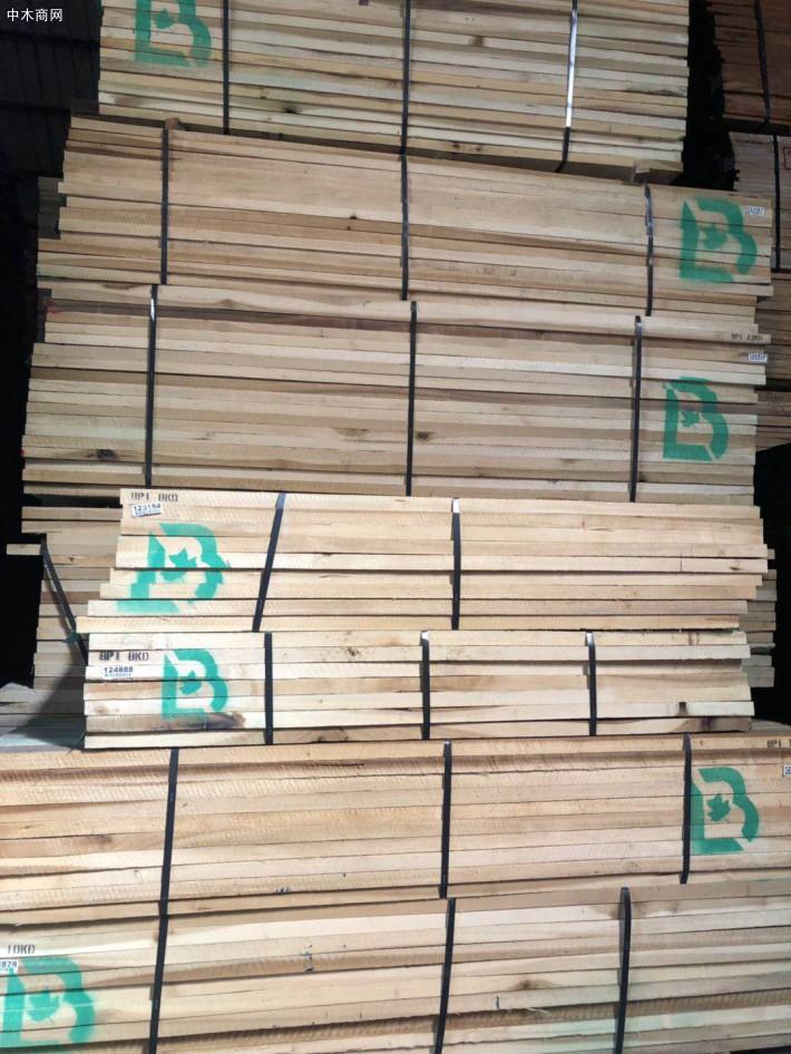 进口美国黄杨(鹅掌楸)木板材