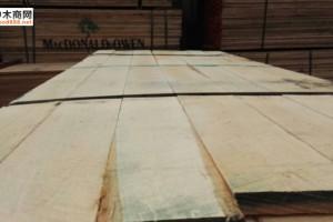 美国椴木板材批发8尺