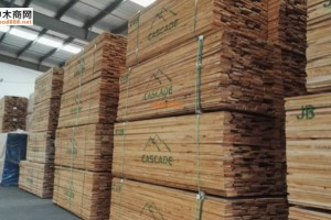 供应各等级规格的美国赤杨木板材