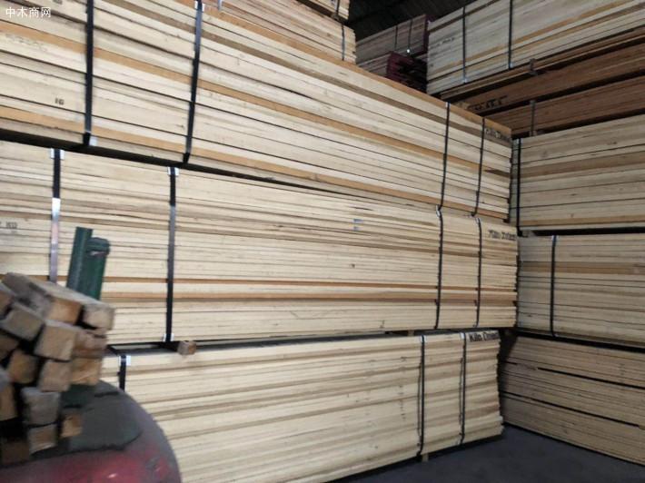 进口北美硬枫木板材图片