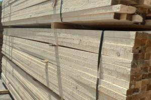广西象州县进行木材产业发展考察交流