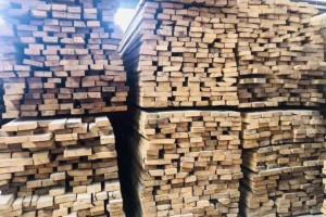 北哈萨克斯坦将建立木材加工集群