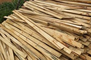 四川首个林业生态科技扶贫现代产业园开工