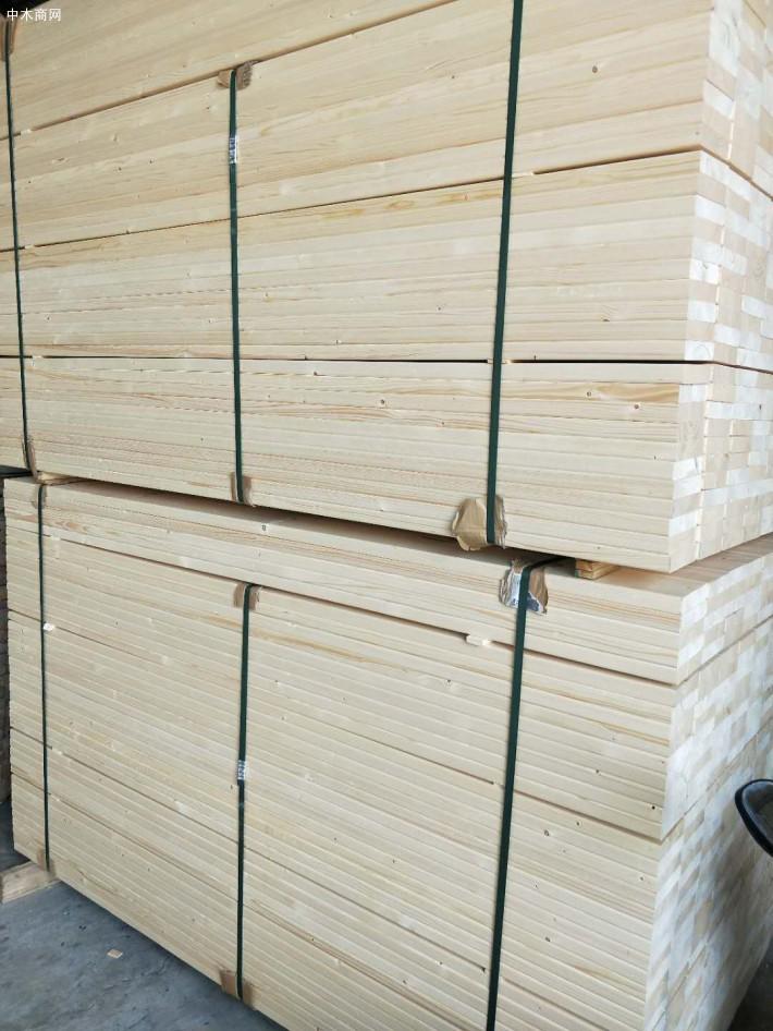 松木的生长周期长