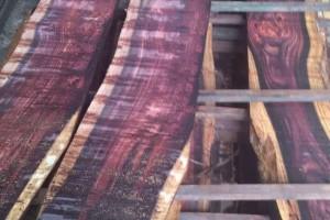 印尼黑酸枝板材_印尼黑酸枝原木批发