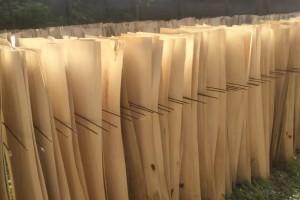 湖北省襄阳市毅航木业厂家直销松木板皮 杨木板皮