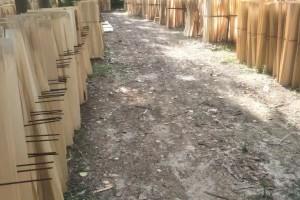 襄阳毅航木业杨木板皮高清图片