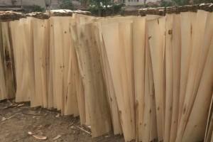 襄阳毅航木业松木板皮高清图片