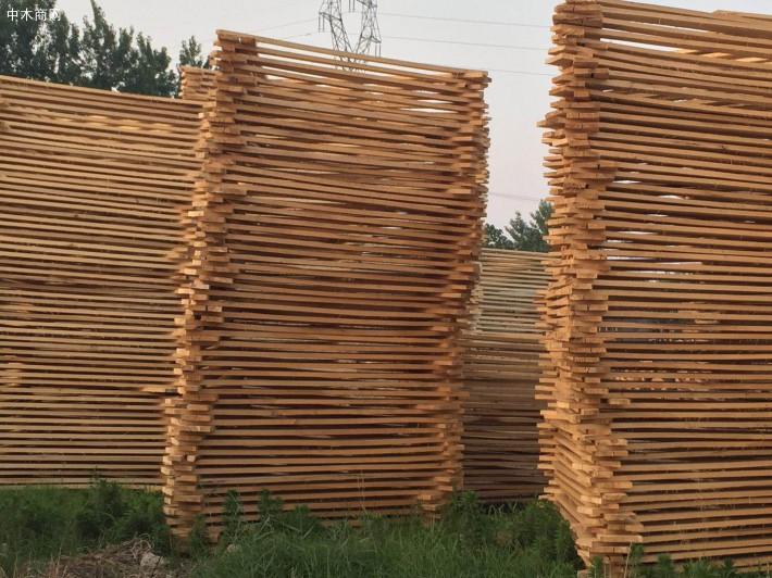 杨木板材缺点介绍