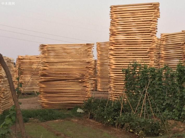 河南建淼木业加工厂