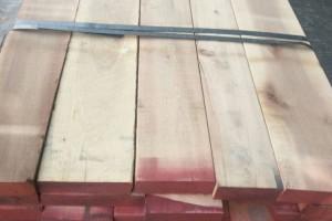 进口美国黄杨板材 美国黄杨木 北美材 黄杨