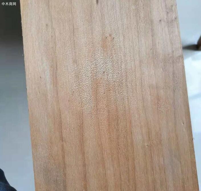 使炭化杨木板材含水量达到