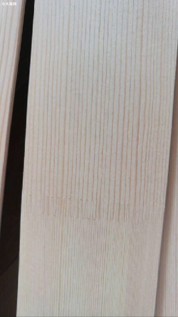 松木纸接叶片