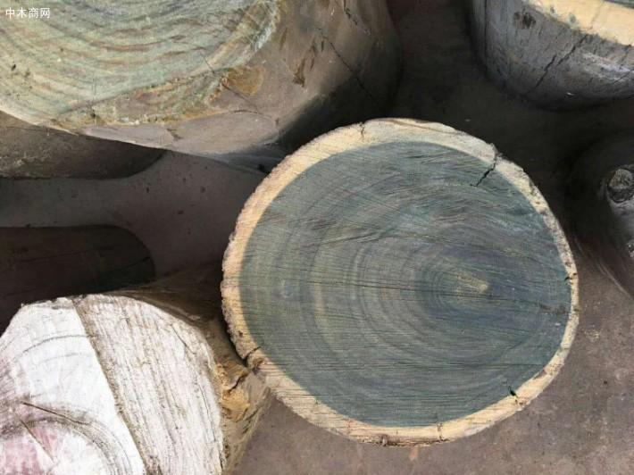 求购:绿檀原木50厘米