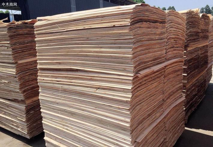 优质杨木三拼木皮价格