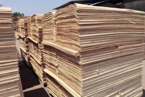 优质杨木三拼木皮批发厂家价格