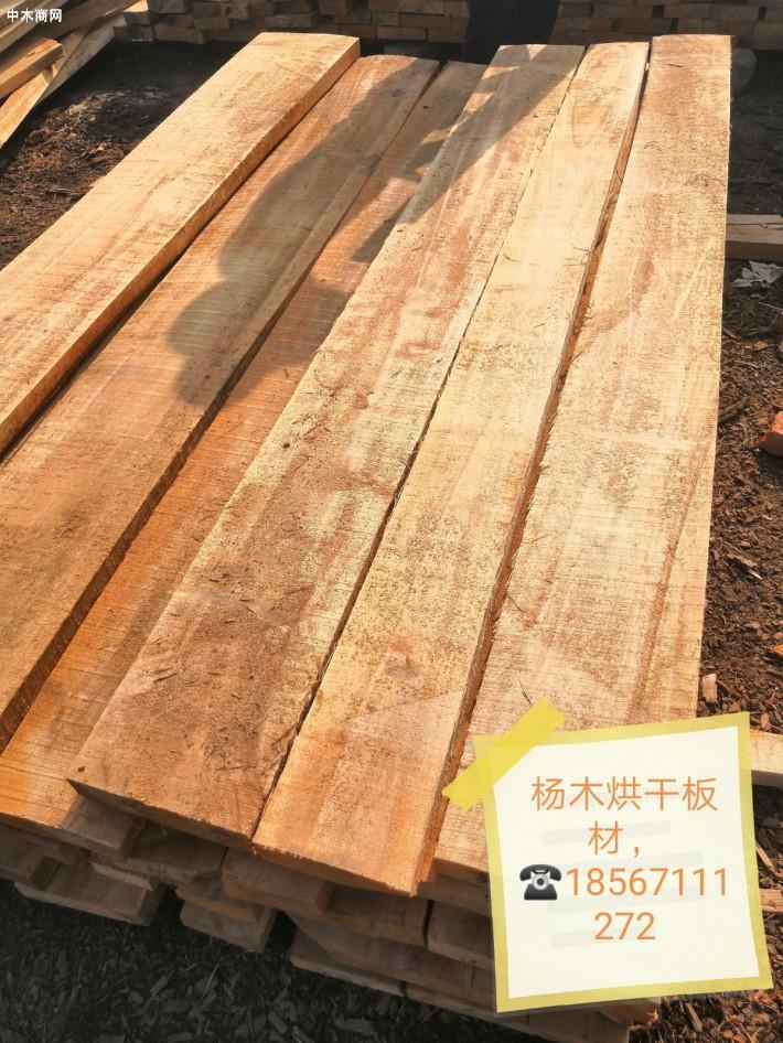 杨木烘干板材厂家
