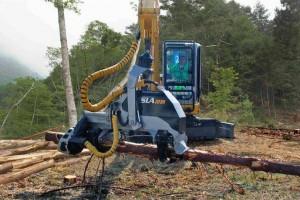 森林法修改:下放采伐限额审批权