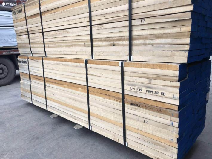 北美鹅掌楸是美国黄杨木吗?北美黄杨木板材的特点