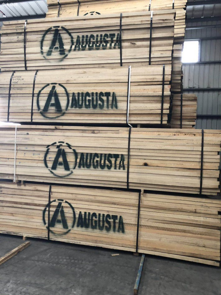 美国黄杨木—美国黄杨木板材做家具的特点