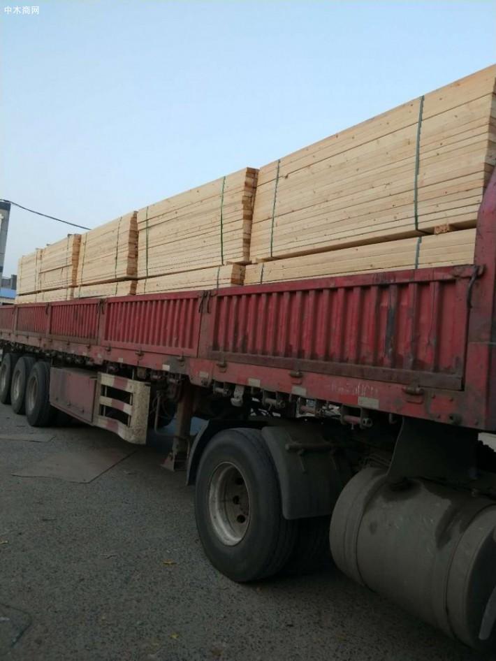 俄罗斯樟子松板材厂家今日最新报价