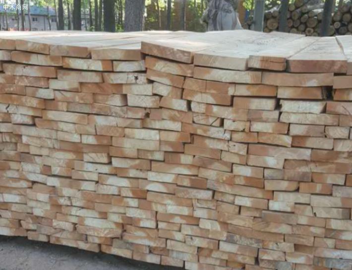 白杨木烘干板材做家具木材纹理通达