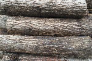收购:低价原木加工包装料