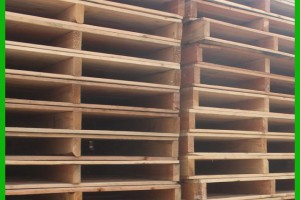 河南孟津县检查使用木制品情况防控松材线虫病