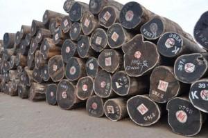 非洲木材当地供应商担心库存增加会破坏价格
