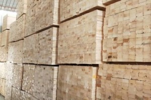 四川广安前锋区开展木材加工厂消防隐患排查