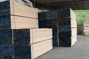 云南麻栗坡县对3家木材经营加工点进行检查
