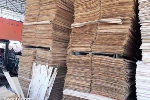 印尼加工厂进口木皮旋切视频