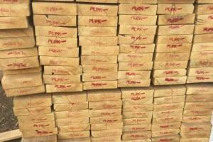 满洲里满泰经贸公司,大量供应俄罗斯樟子松定尺实木板材