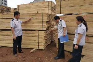 青白江开展松材线虫病疫木专项执法检查「松木锯材」