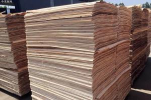 常见木皮的种类有哪些