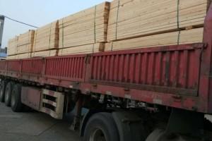 兰州新区打造全省首个俄罗斯进口木材集散分拨中心「俄罗斯材」