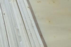 广东用漂白杨木面皮的板厂